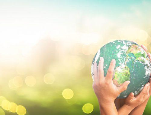10 medidas para combatir el cambio climático desde el sector hotelero