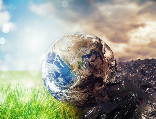El Zero Waste: una nueva apuesta por la sostenibilidad